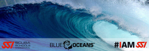 PROTEGGIAMO ASSIEME I NOSTRI OCEANI